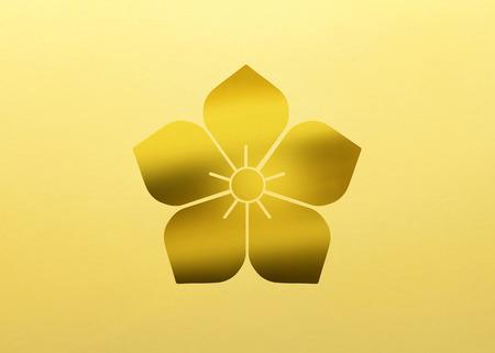 bellflower: Bellflower bellflower
