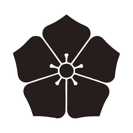 bellflower: Tosa home bellflower and salmon bellflower