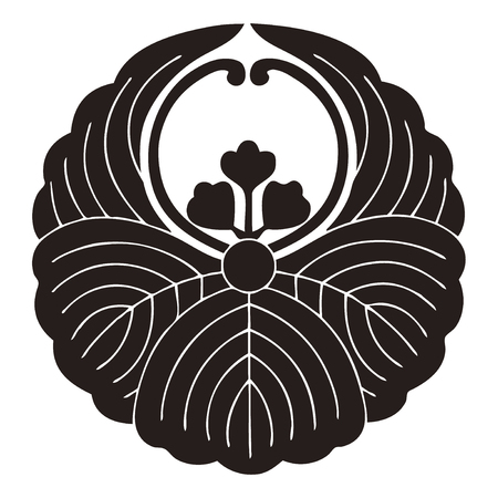 tomentosa: Tung Fusenkiri