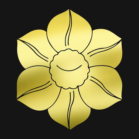 recommendation: Narcissus flowers flower of the recommendation