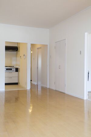 APARTMENT LIVING: Kitchen and corridor seen from the living room