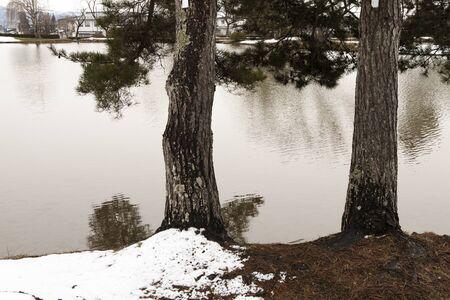 lingering: Watch kanjizai Maizuru months pond
