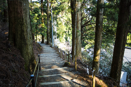 an approach: Approach of Tamaki Shrine Stock Photo