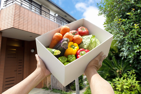 Vegetable home delivery