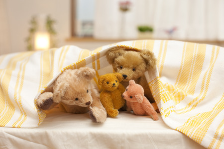 futon: Parent-child put in an appearance teddy bear from futon