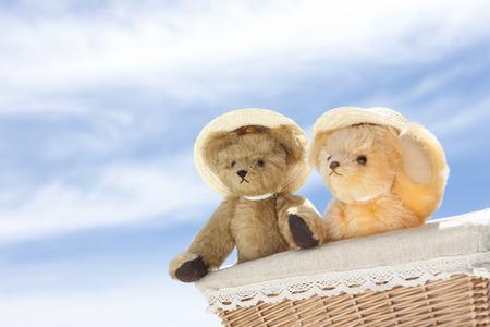 chapeau paille: Teddy bear wearing a straw hat