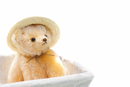 entered: Teddy bear that has entered the basket Stock Photo