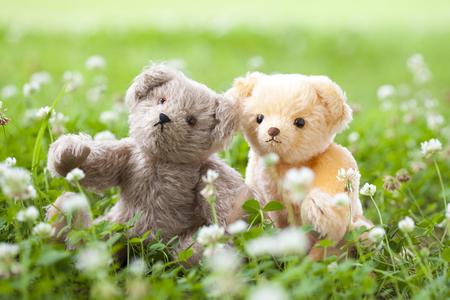 Teddy bear and trefoils