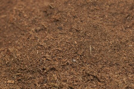 peat: Palm peat for horticulture