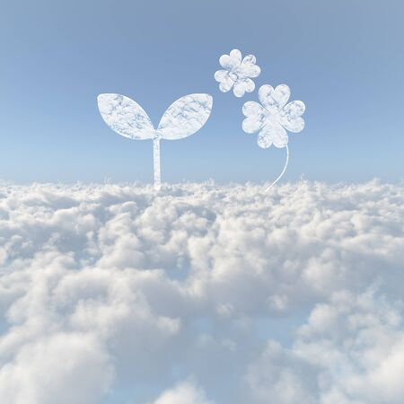 sprouting: Clouds sea of clouds and Yotsuba