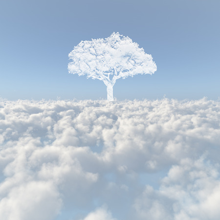 firmament: Sea of clouds and a tree of the cloud