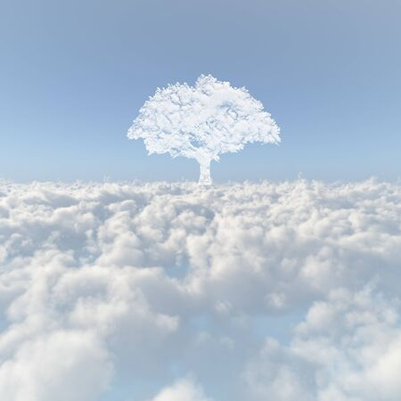Sea of clouds and a tree of the cloud