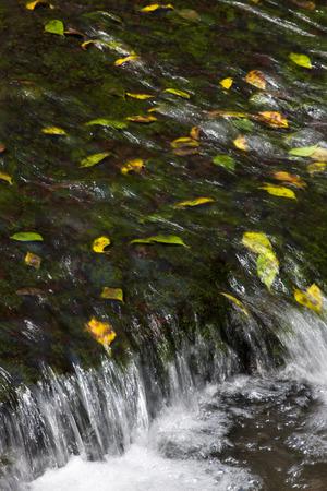 source d eau: Source d'eau de l'eau Blanc