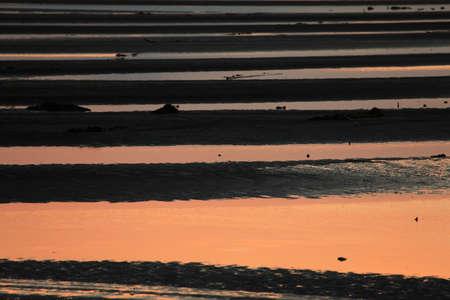 Ariake Sea of flats