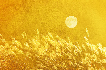 late autumn: Gold folding screen and pampas grass and the full moon Stock Photo