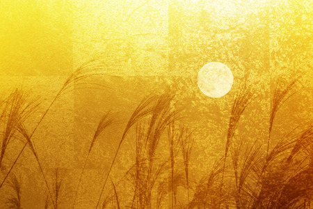 folding: Gold folding screen and pampas grass and the full moon Stock Photo