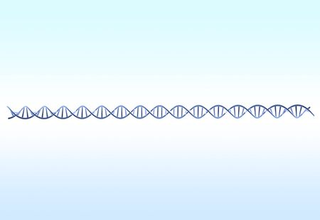 heredity: DNA images Stock Photo