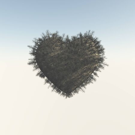 circumstance: Heart-shaped dead tree