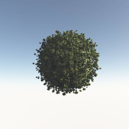three dimension shape: Tropical trees from the sphere