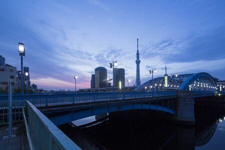 Aube Tokyo arbre ciel