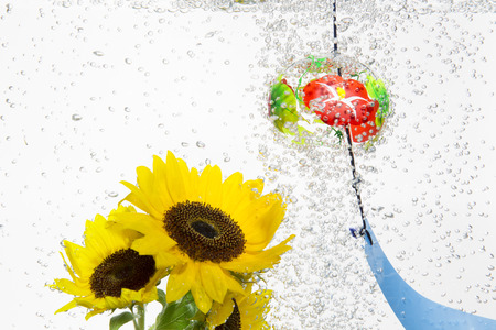 chimes: Water wind chimes and sunflower