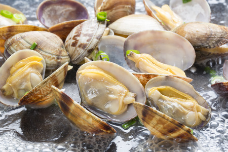 Steamed clams 스톡 콘텐츠