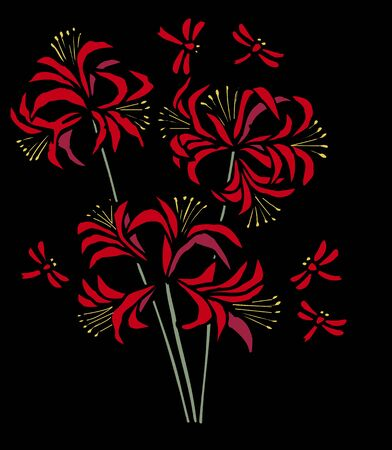 Kirie amaryllis black back