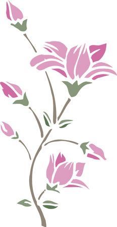 magnolia: Cutout magnolia