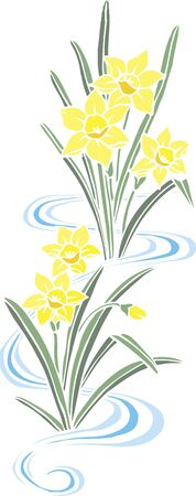 daffodil: Cutout daffodil Stock Photo