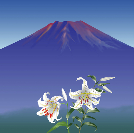 world heritage: Fuji and the gold-banded lily Stock Photo