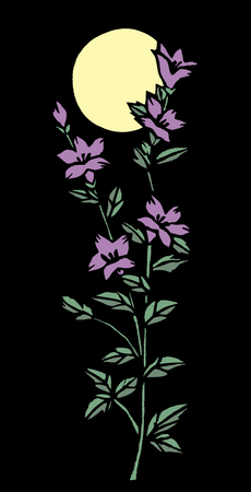 bellflower: Cut Etsuki and bellflower black back