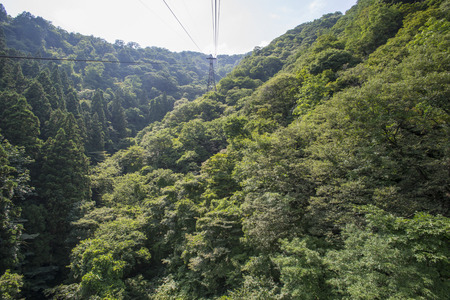 Sado Yahiko Yoneyama National Monument wrapped in primeval forest Stock Photo
