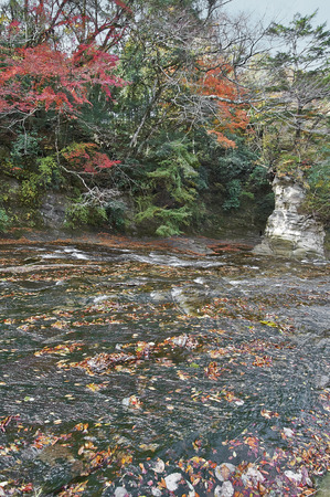upstream: The view from the chestnut or waterfall upstream