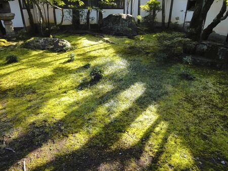 ninnaji: Imperial Palace garden of Ninna-ji Temple