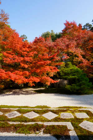 hermitage: Natural gift hermitage of Higashiniwa