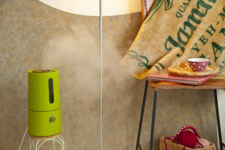 humidifier: Heating and humidifier
