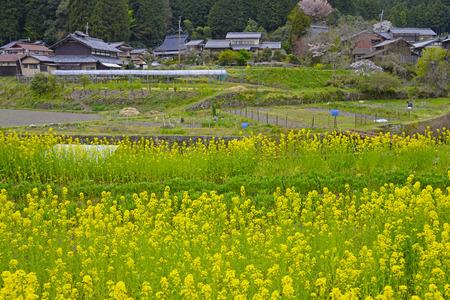 Original landscape of Japan