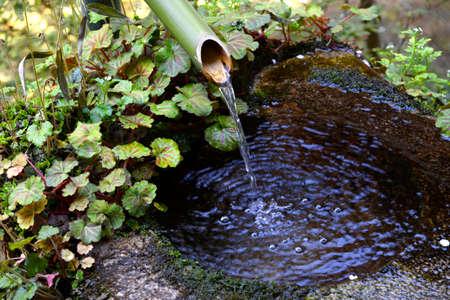 lavamanos: Agua fr�a Natural Foto de archivo