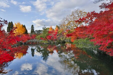garden city: Autumn leaves of Eikan-do Fengcheng pond Stock Photo