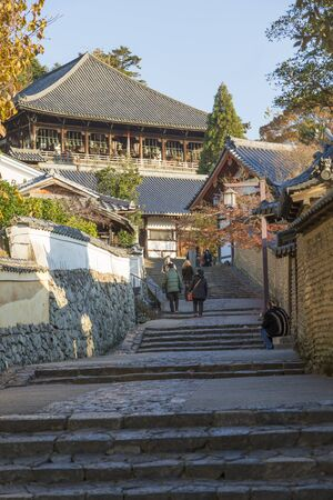 cultural artifacts: Cobbled leading to Todaiji February Hall