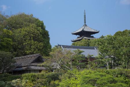 ninnaji: Five-story pagoda from Ninna-ji Temple Nantei Editorial