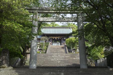 an approach: Stone torii of Suwa Shrine approach Editorial
