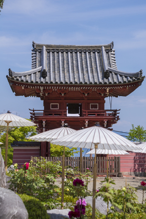 back gate: Taima temple back Institute tower gate and peony