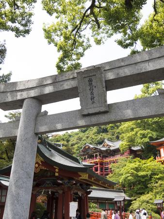 torii: Torii of Yutoku Inari Shrine Editorial