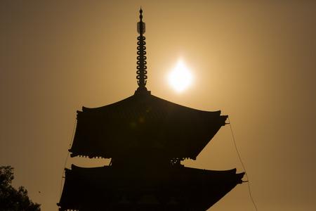 setting  sun: Triple tower of hokki-ji and the setting sun