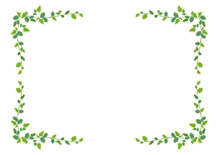 Houseplants: frame - Pumira 写真素材