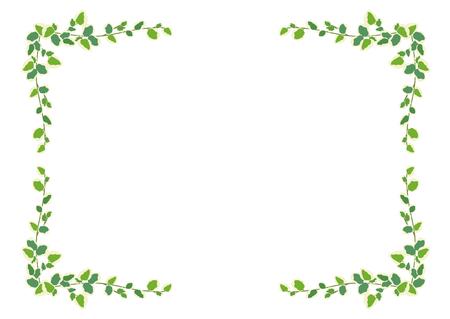 leaves frame: Houseplants: frame - Pumira Stock Photo
