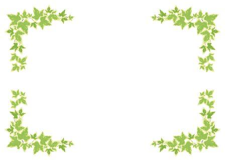 houseplants: Houseplants: frame - Hedera