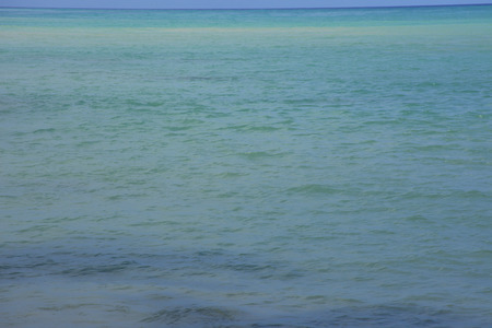 green sea: Emerald green sea horizon