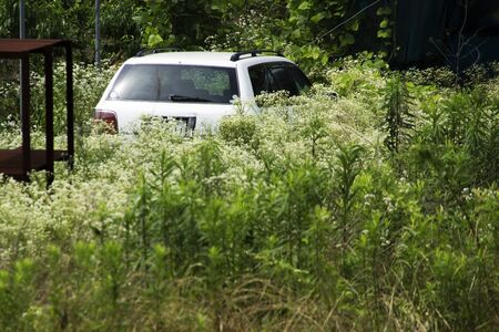 passenger car: Passenger car that has been left in the grass Stock Photo